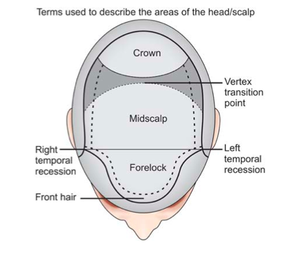 how to get hairs on bald area